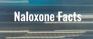 Naloxone Facts graphic