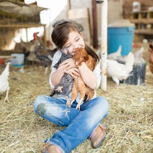 little girl hugging chickens
