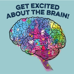 Get Excited About the Brain with a multicolored graphic of the brain
