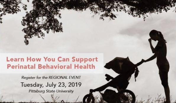 Perinatal Behavioral Health Training